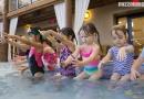 aquatics, Swim Lesson, Tiger Swim, Tiger Grotto, Jordan Liekweg